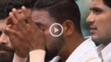 cricket news, Indian cricketer, mohammed siraj, video